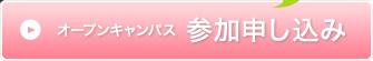 btn_open_on.jpg